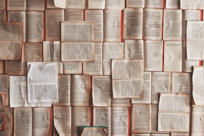 Das Bild zeigt geöffnete Bücher